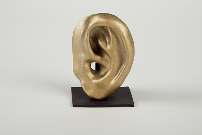 3D model of an infant's ear