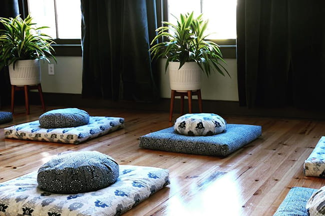 Light-filled room with round and square cushions on wood floor with plants in pots near windows