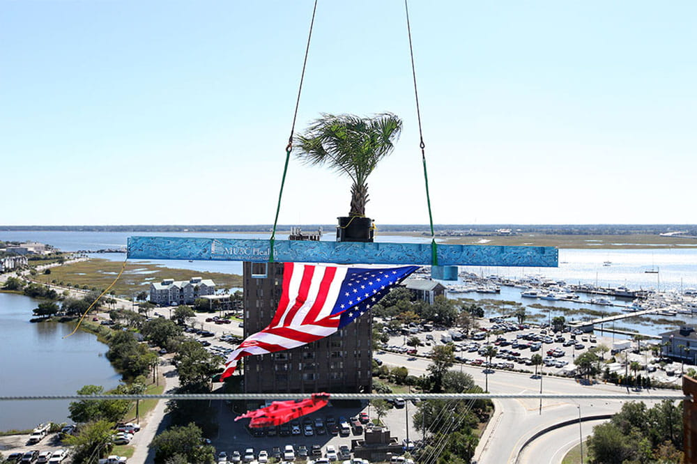 Blue beam draped in an American flag and holding a Palmetto tree