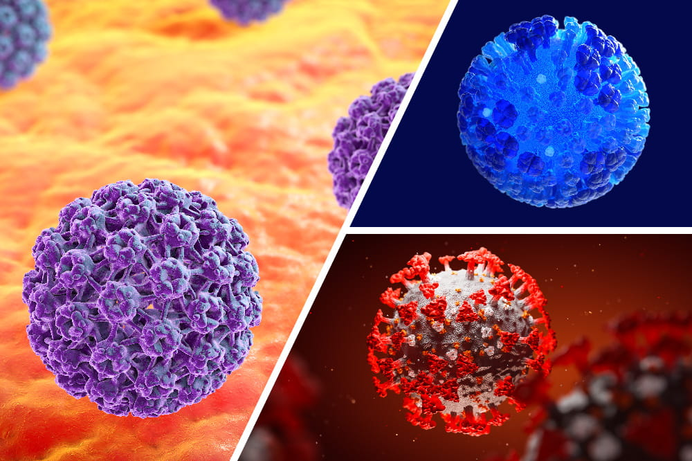 Virus hpv Can you