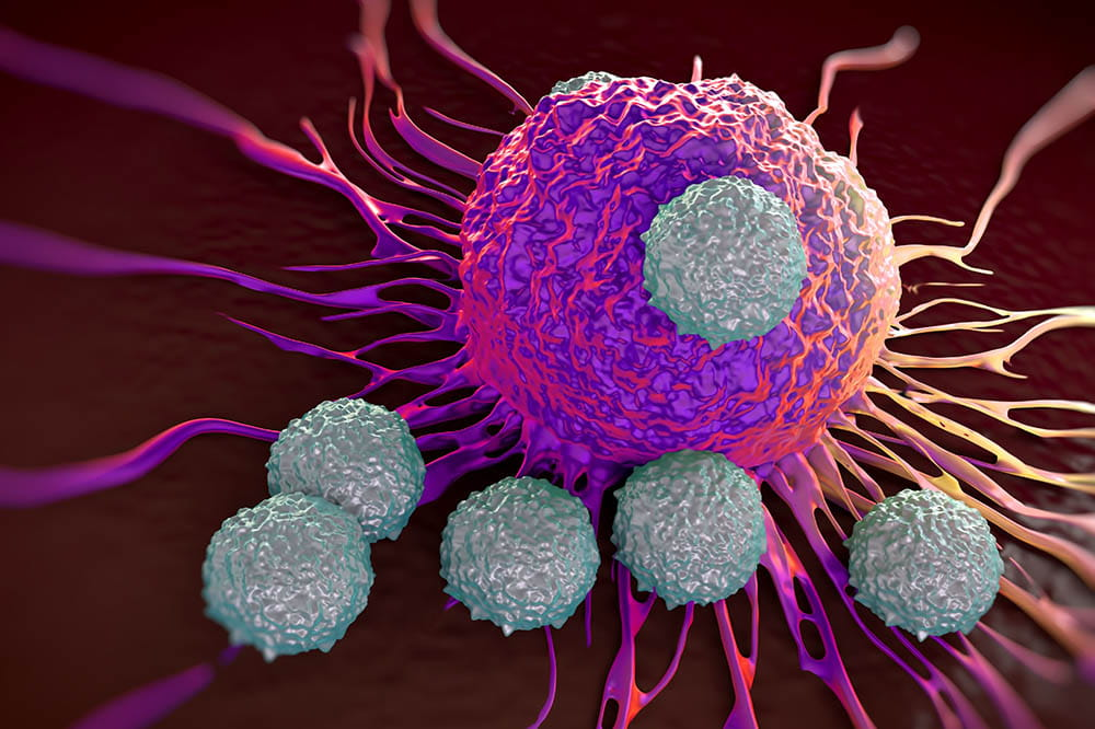T cells attack cancer cell
